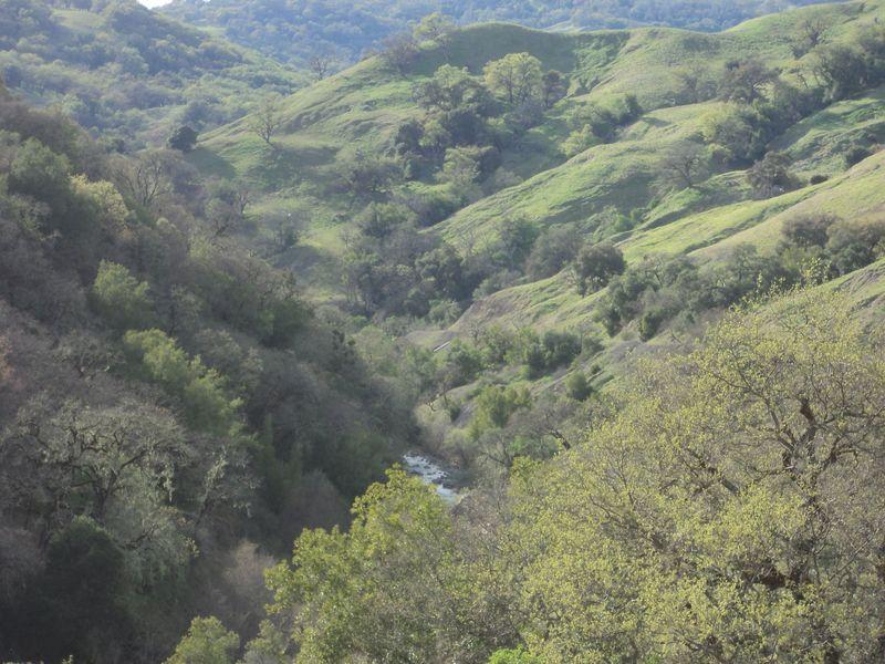 Gyerser Road Trip Sonoma 038