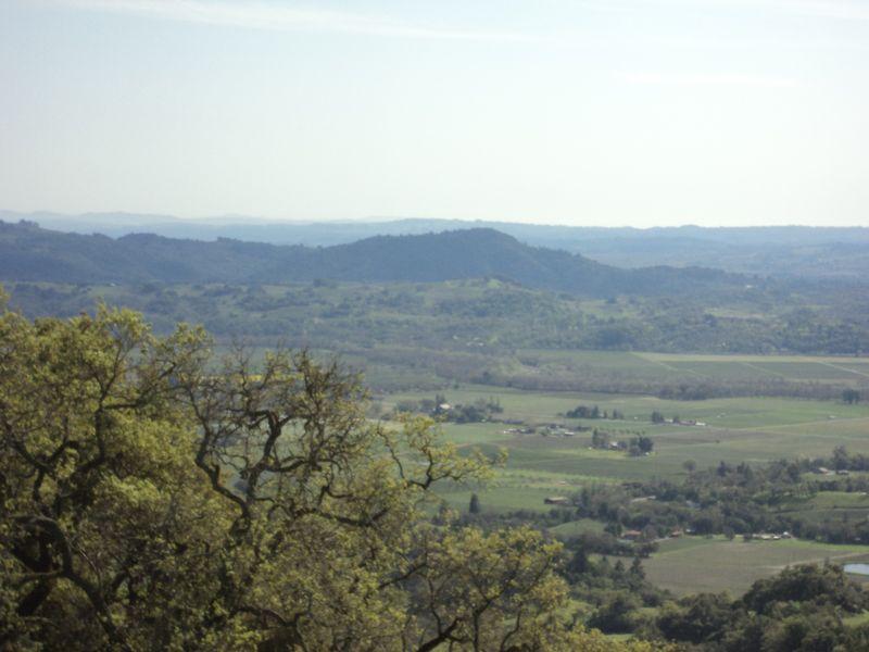 Gyerser Road Trip Sonoma 026