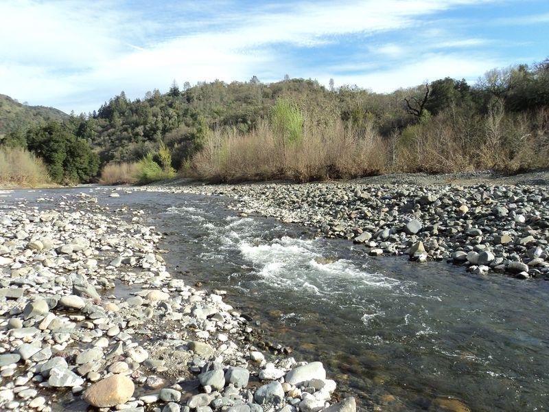 Gyerser Road Trip Sonoma 042
