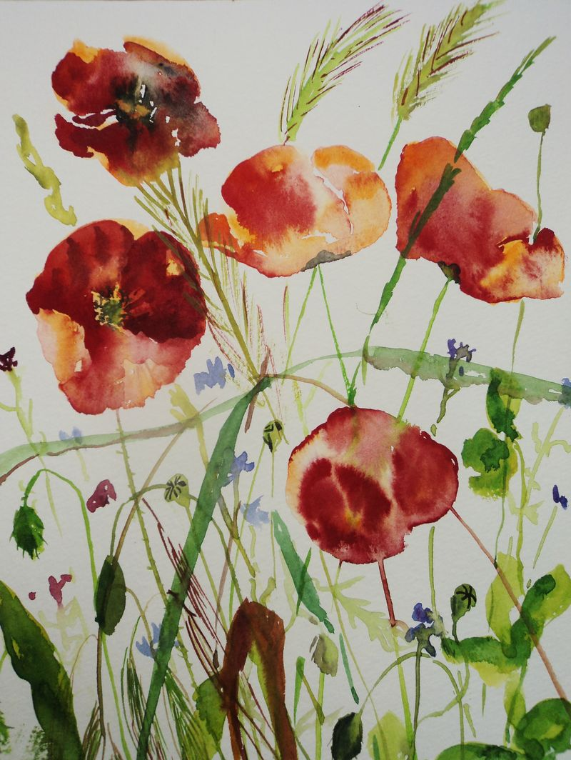 Painted poppies 001