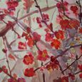 Japonica. Sold