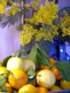 Mimosa_and_lemons